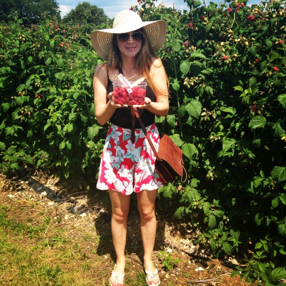 Pick your own raspberries