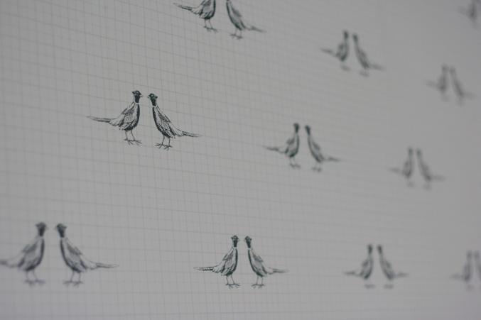 Pheasant wallpaper Next