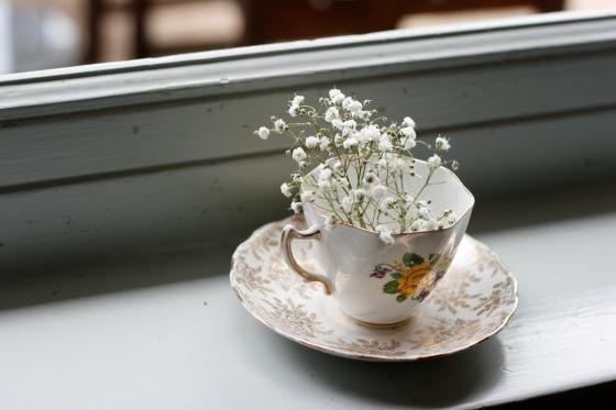 teacup flowers